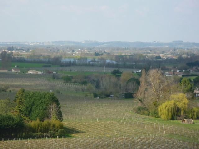 Petite Balade entre Castillon et Langon Pujols11