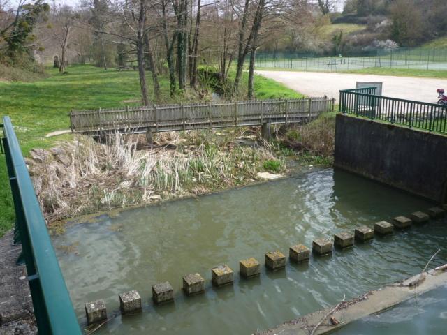 Petite Balade entre Castillon et Langon Pujols39