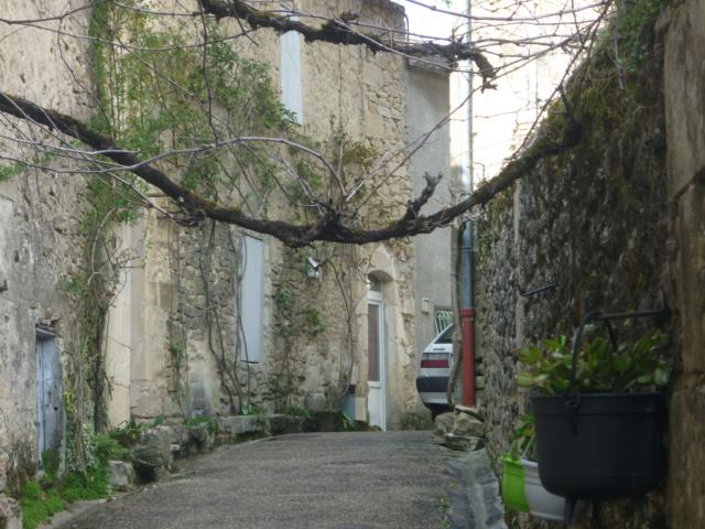 Petite Balade entre Castillon et Langon Pujols54