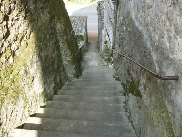 Petite Balade entre Castillon et Langon Pujols56