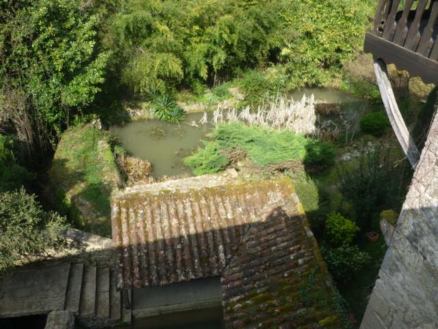 Petite Balade entre Castillon et Langon Pujols60