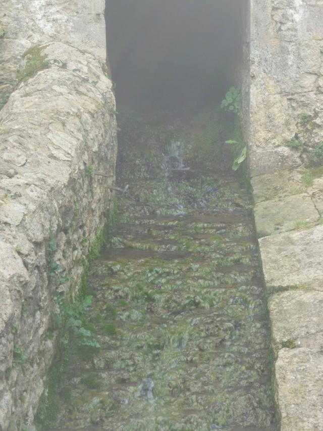 Petite Balade entre Castillon et Langon Pujols62