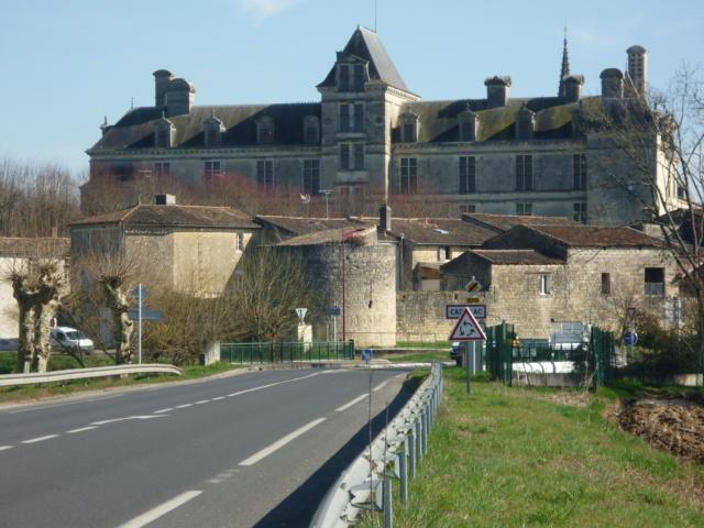 Petite sortie entre Bordeaux et La Réole 26-02-2019 Sainte25