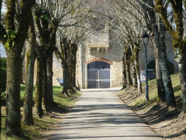 Petite sortie entre Bordeaux et La Réole 26-02-2019 Sainte29