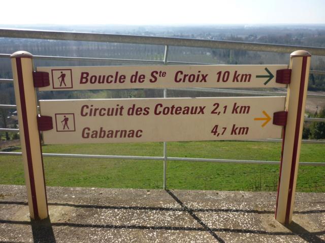 Petite sortie entre Bordeaux et La Réole 26-02-2019 Sainte33