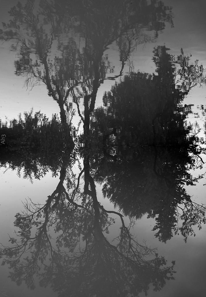 Double reflet expérimental Reflet12