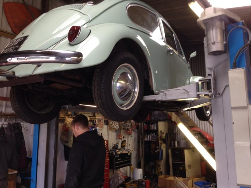 Whitebrow's 65 Bug Full Restoration 13859810