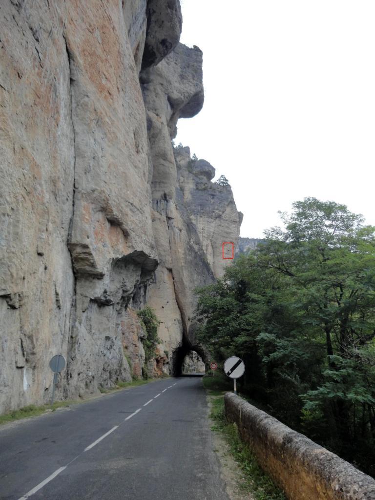 Les Gorges du Tarn en décembre. - Page 8 Dsc02412