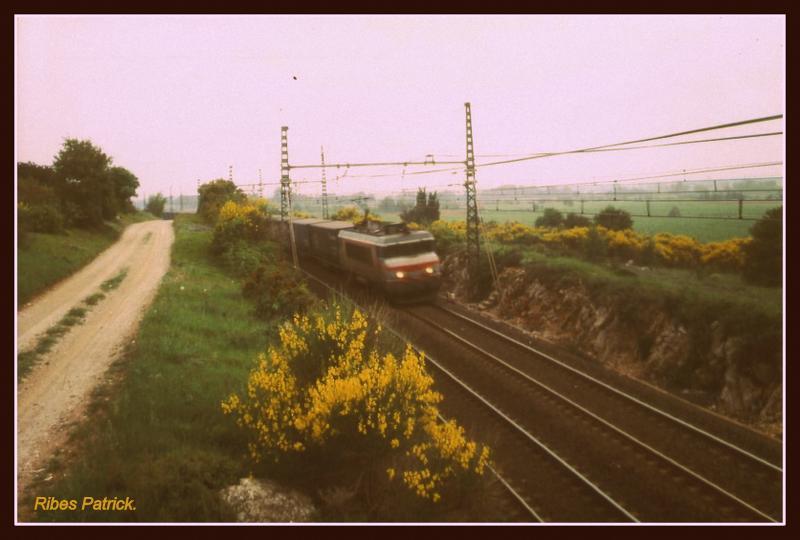 Photos et vidéos de la ligne Bordeaux - Toulouse - Narbonne - Sète (Fil 3) - Page 6 Train_15