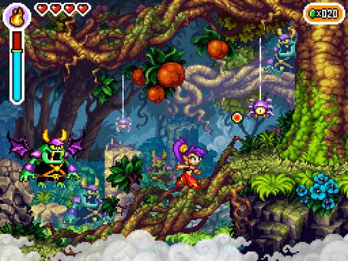 Shantae : Risky's Revenge (DS) 18hee710