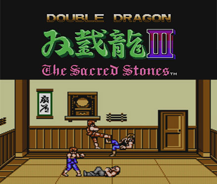 Double Dragon 3 : The Rosetta Stone (NES) Tm_wii10