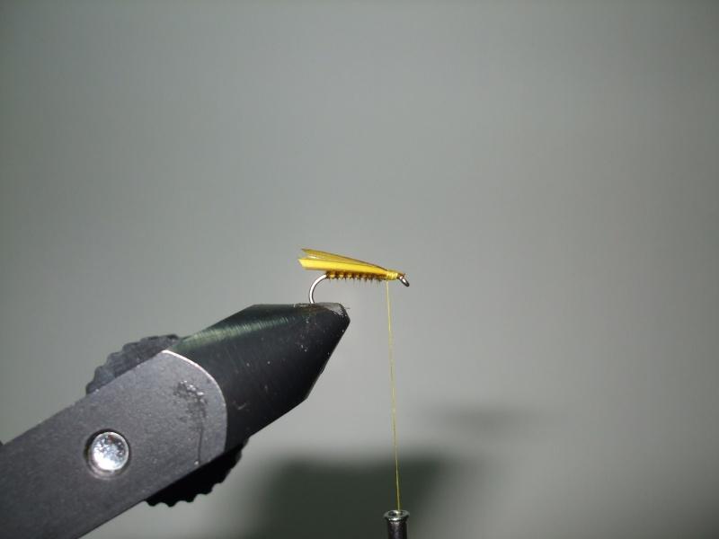 Une petite perle jaune Dscf3118