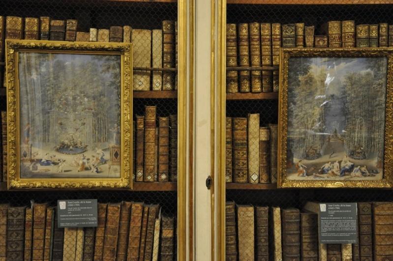 Expo Bosquet du Labyrinthe à la bibliotheque municipale - Page 2 2013-113