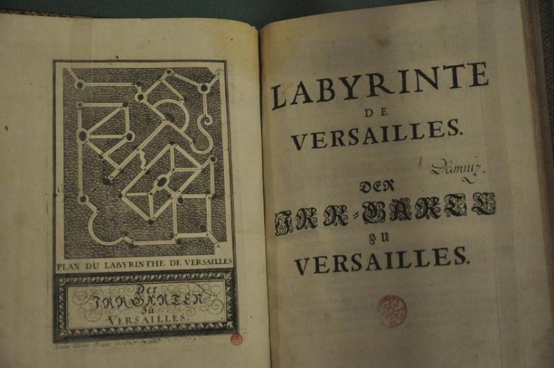 Expo Bosquet du Labyrinthe à la bibliotheque municipale - Page 2 Lab_1210