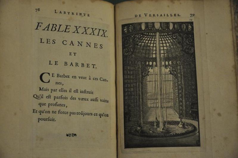 Expo Bosquet du Labyrinthe à la bibliotheque municipale - Page 2 Lab_1310