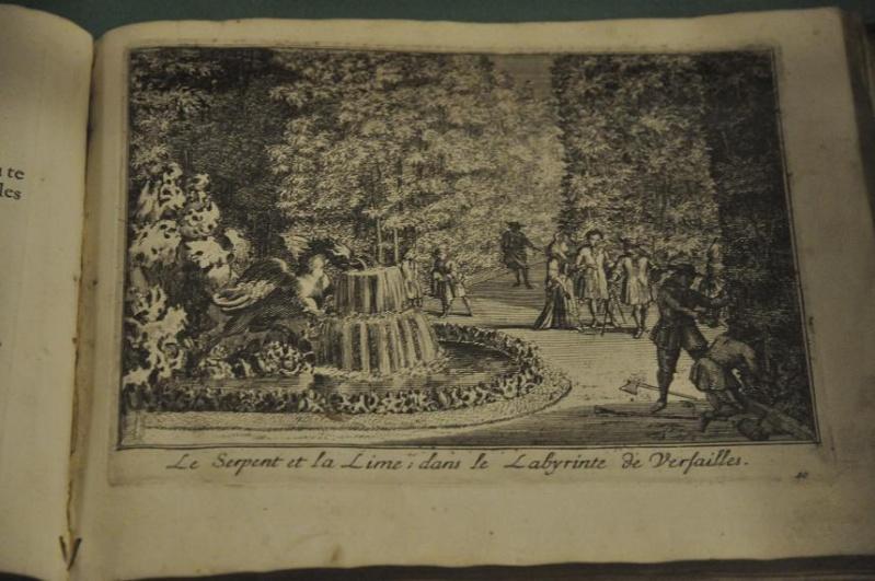 Expo Bosquet du Labyrinthe à la bibliotheque municipale - Page 2 Lab_1810