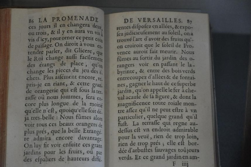 Expo Bosquet du Labyrinthe à la bibliotheque municipale - Page 2 Lab_2410
