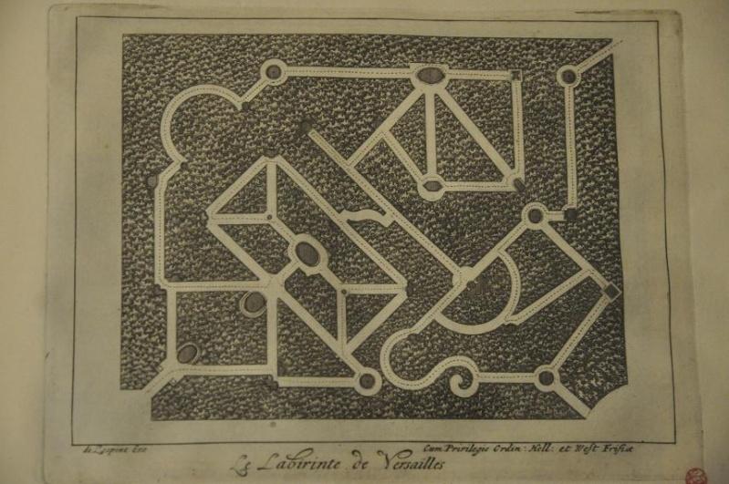 Expo Bosquet du Labyrinthe à la bibliotheque municipale - Page 2 Lab_2510