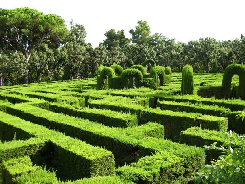 Mansion's Maze 102_5910