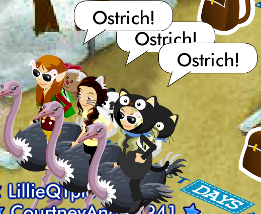 Ostrich PhotoShoot ;D Swag110