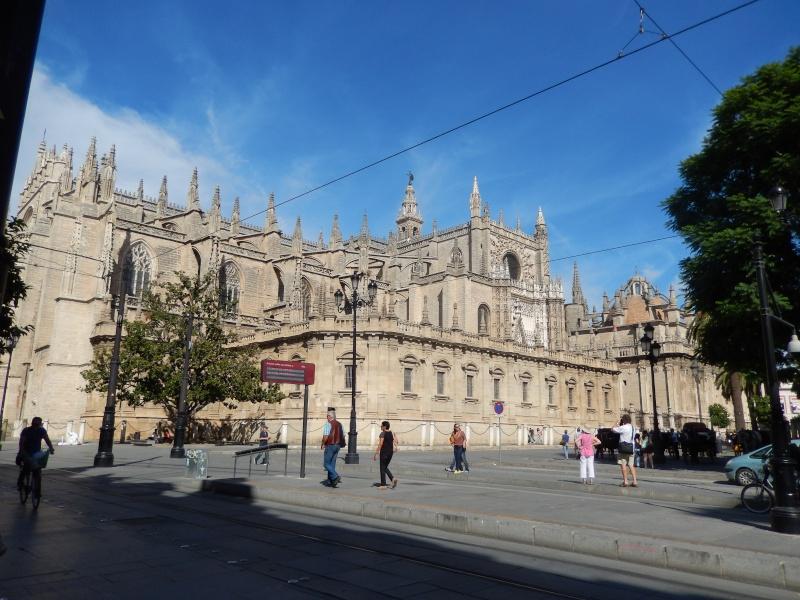 Sevilla 15/10/2013 Cathdr10