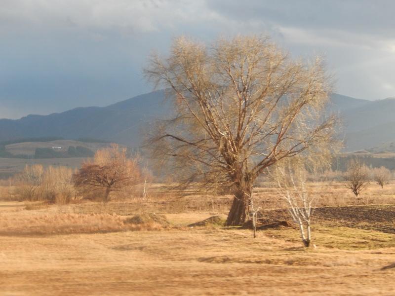 La BULGARIE passage de notre 10 ème frontière le 20.01.2014 Dscn2918