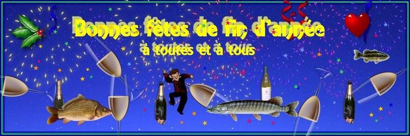 La Bonne Année, c'est déjà demain! lol Bannia10