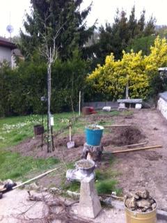 Mon jeune jardin a Auvers beach Image10