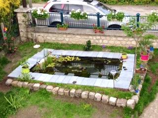 Mon jeune jardin a Auvers beach Image710
