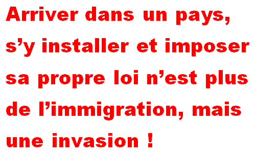 immigration ou invasion?  Immigr10