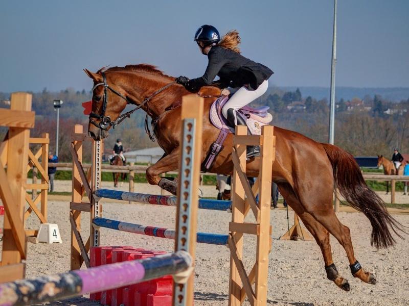 Equitation Aa090210