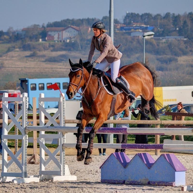 Equitation Aa090211