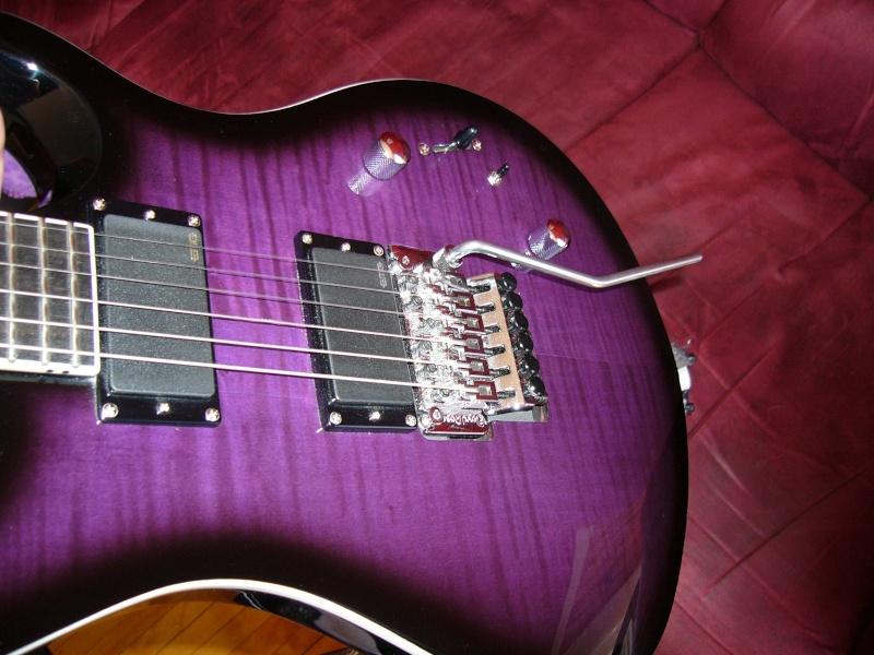 Votre meilleur guitare celle que vous ne vendrai jamais... P1050328
