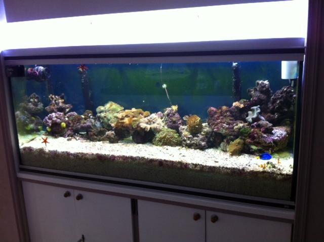 Projet Aqua 450 litres avec ARDUINO - Page 4 1210