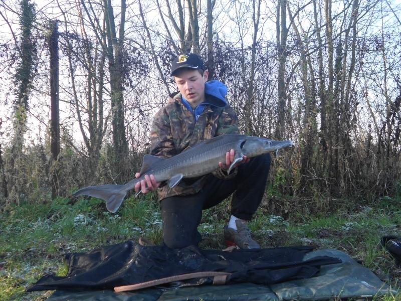sortie pêche 2014 : Mon album photo [Petit Alexis] Dscn0524