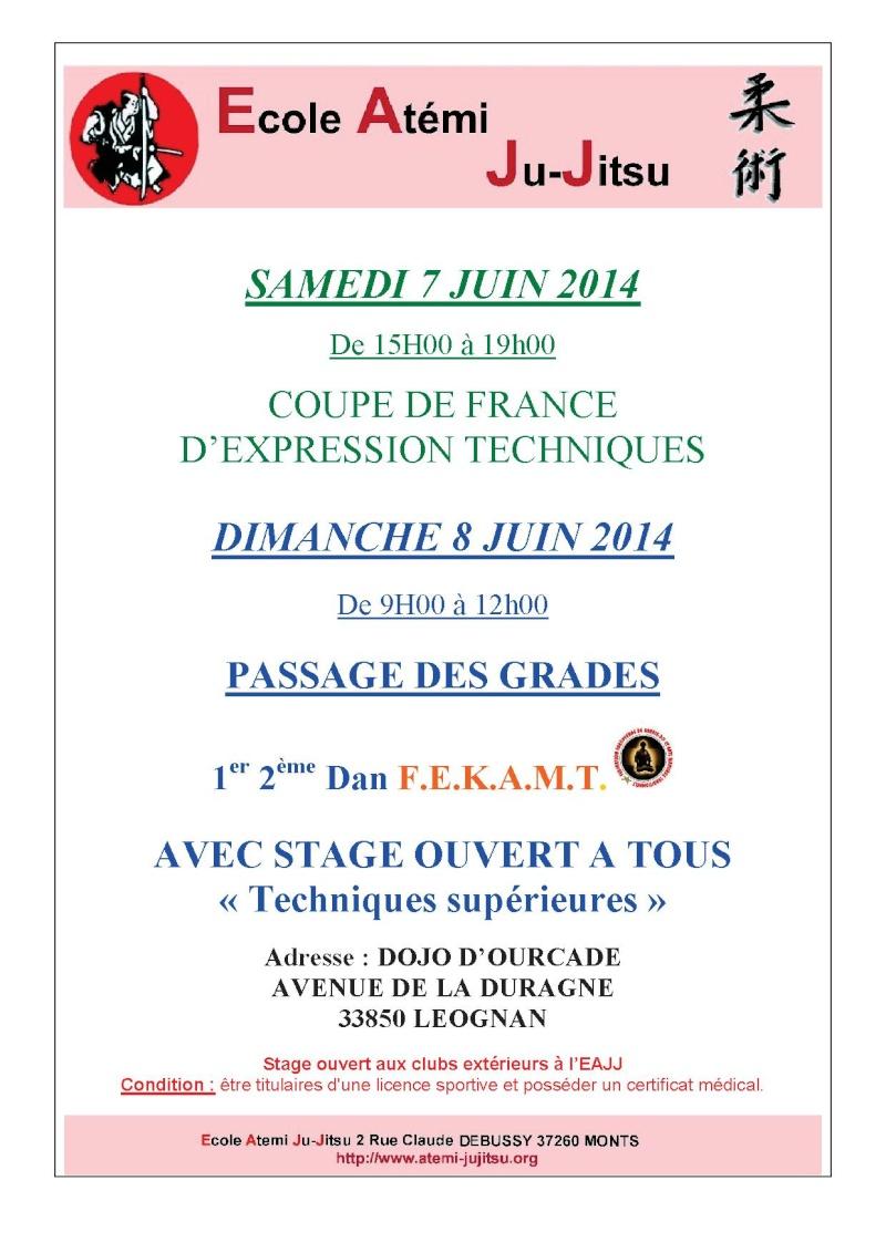Jujitsu Nantes : Forum de l'AJDP - Portail Affich14