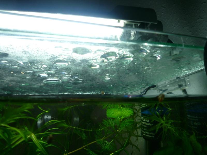 Condensation, comment faites- vous ? P1010713