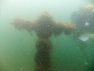 Stoney Cove 23/3/2014 0115e510