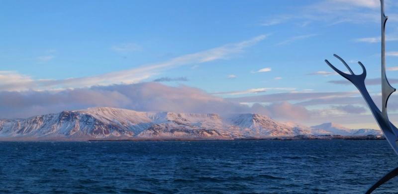 Islande, un jour, une photo - Page 5 1er_ja10