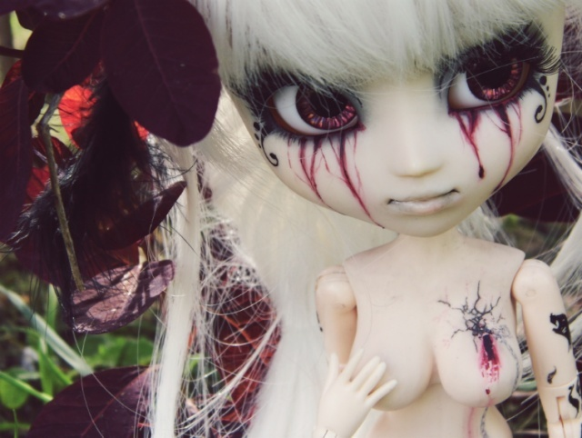 [Pullip FC & Pullip Mir]  Young Wolf 2014-010