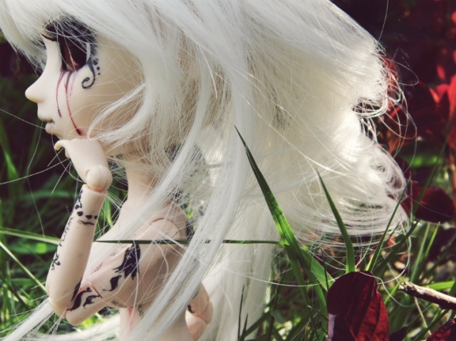 [Pullip FC & Pullip Mir]  Young Wolf 2014-012