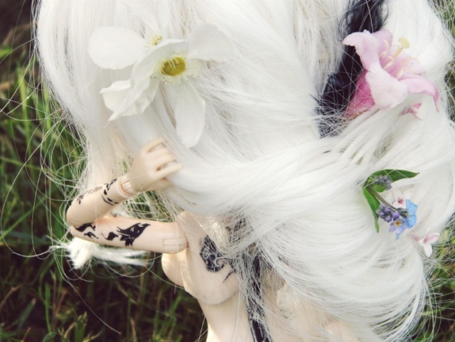 [Pullip FC & Pullip Mir]  Young Wolf 2014-023