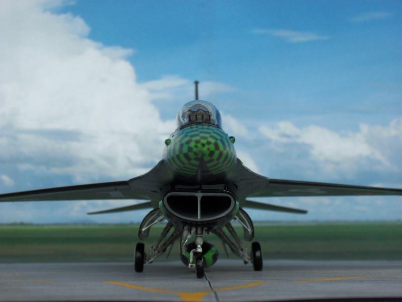 "F-16 ""Green Lightning"" Italian Air Force 100_0213"