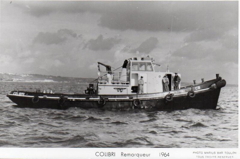 * COLIBRI (1960/2000) * Img01510