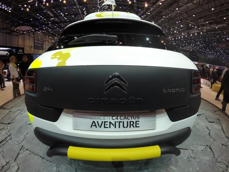 [Salon de l'Auto Genève 2014 - HD3+BE] GoPro et Citroën Gopr0613