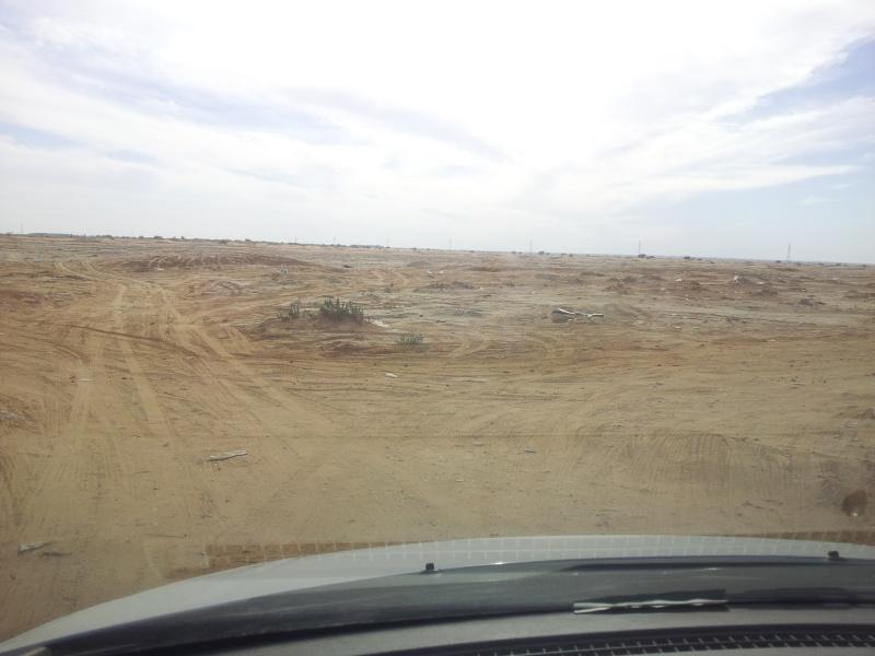 كشتة طريق حرض بالخرج 20131113