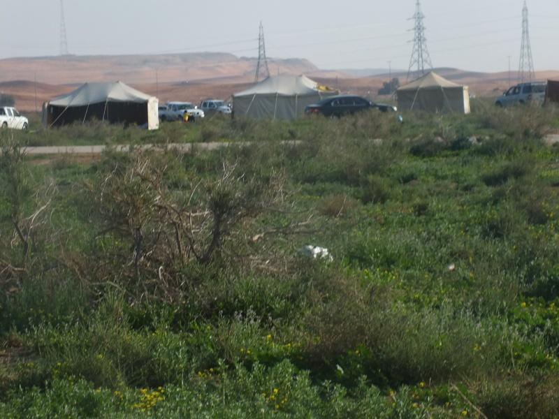 ربيع الرويضة بالخرج طريق الدلم  Dscf1210