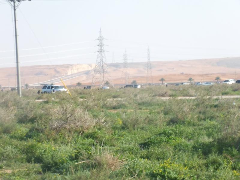 ربيع الرويضة بالخرج طريق الدلم  Dscf1211