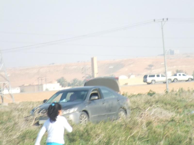 ربيع الرويضة بالخرج طريق الدلم  Dscf1213