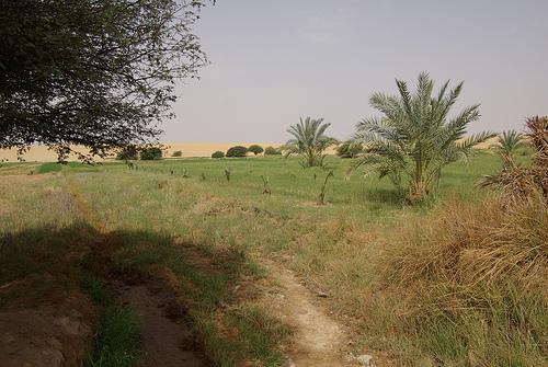 مصر أم الدنيا Houuoo10